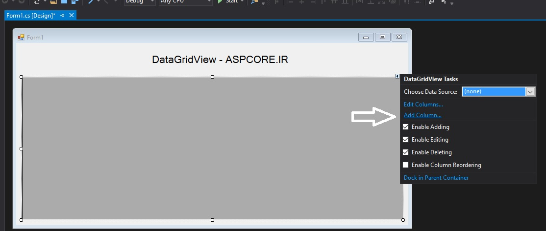 نمایش اطلاعات در DataGridView در سی شارپ